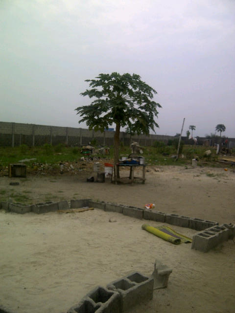 Fenced 6plots directly on Lekkie Epe Express just after Abraham Adesanya estate