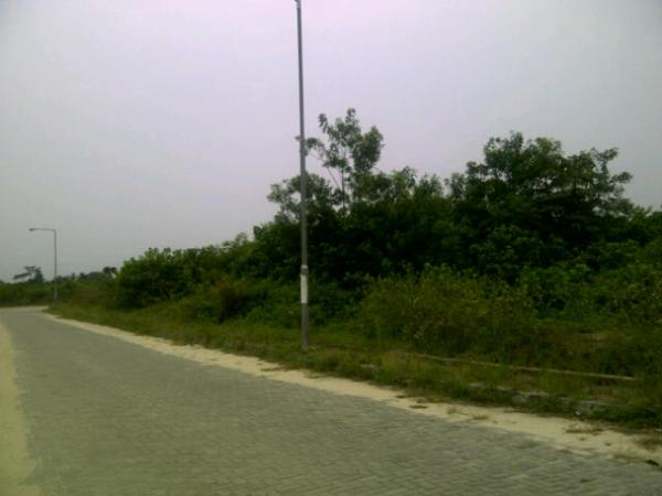 Well Laid Road for 120Acres @ Abijo Estate
